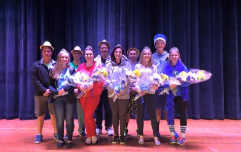 AHS Announces Homecoming Court