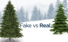 Fake or Real Christmas Tree?